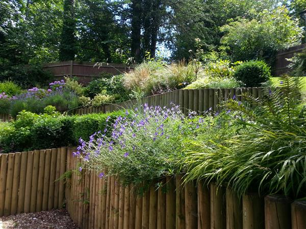 Stepped Garden in Caterham